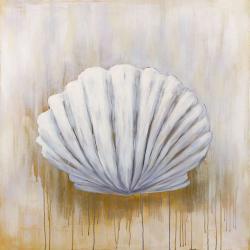 Feston shell