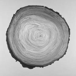Grayscale round wood log