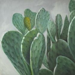 Cactus à aubes