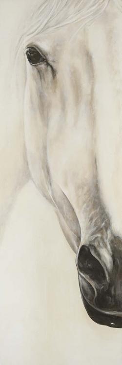 Demi-portrait d'un cheval paisible