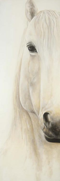 Demi-portrait d'un cheval souriant