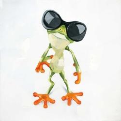 Drôle de grenouille à lunettes de soleil
