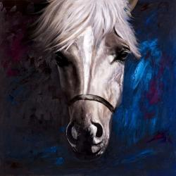 White horse on blue background