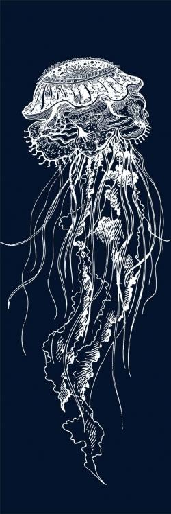 Detailed jellyfish illustration