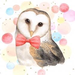 Chic owl