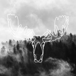 Minimalist moose head