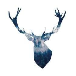 Deer head landscape