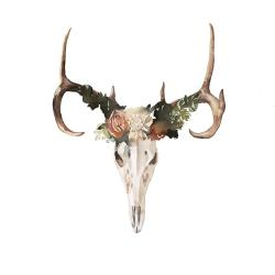 Deer skull with roses