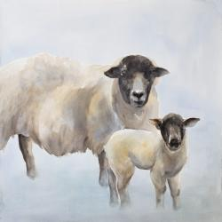 Sheep and its baby