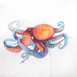 Colorful octopus profile