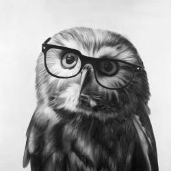 Realistic northern saw-whet owl with glasses