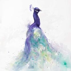 Abstract peacock in watercolor