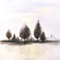 Landscape of trees