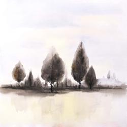 Paysages d'arbres