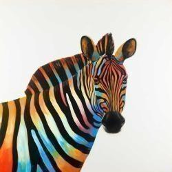 Colorful profile view of a zebra