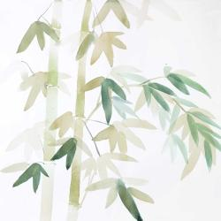 Watercolor bamboo leaves and branches