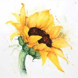 Watercolor sunflower with paint splash