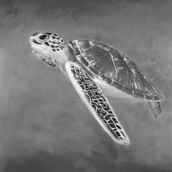 Grayscale sea turtle