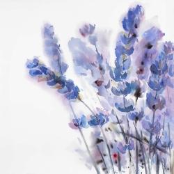 Watercolor lavender flowers