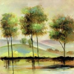 Trees near the lake