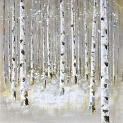 Birch forest by winter