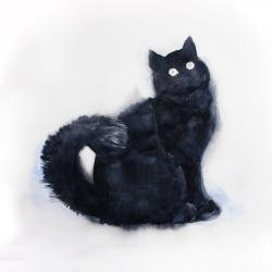 Furry black watercolor cat
