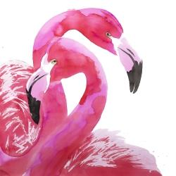 Watercolor flamingo love