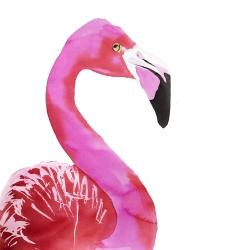 Watercolor proud flamingo profile