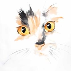 Watercolor cat face closeup