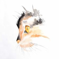 Watercolor cat face profile