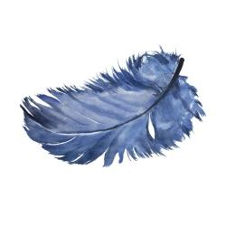 Watercolor blue feather