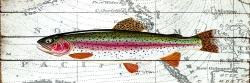 Trout on a world map