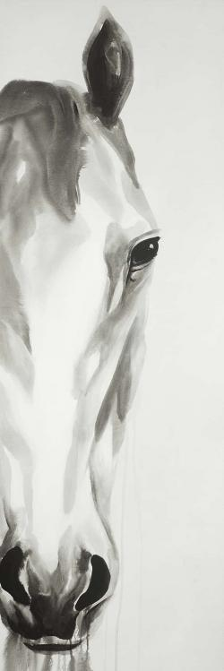 Cheval noir & blanc de face