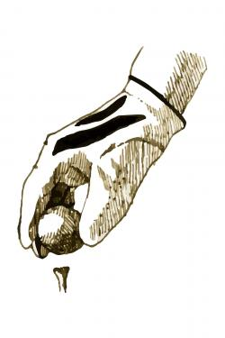 Illustration of a golf glove