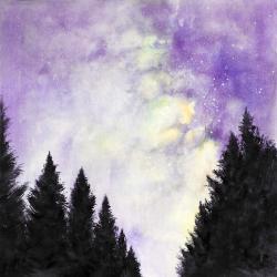 Purple starry sky in a dark forest