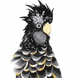 Perroquet cacatoès doré