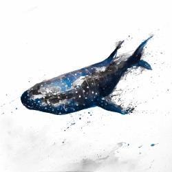 Abstract whale shark