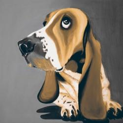 Gold basset hound dog