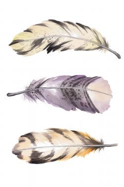 Ensemble de plumes rayées horizontales