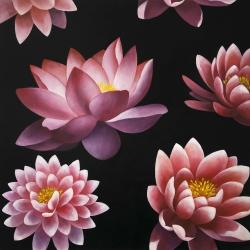 Lotus flower pattern