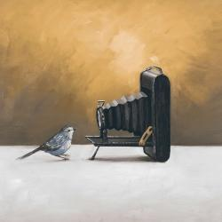 Old camera with bird
