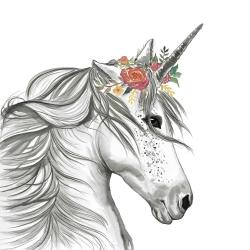 Licorne magique