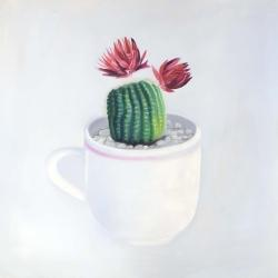 Mini cactus in a cup