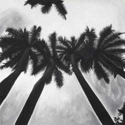 Monochrome palm trees