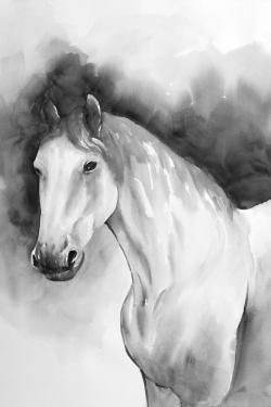 Domino horse