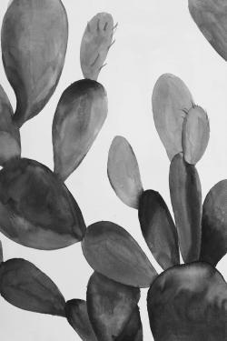 Grayscale cactus