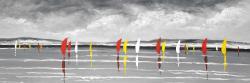 Sailboats on the lake
