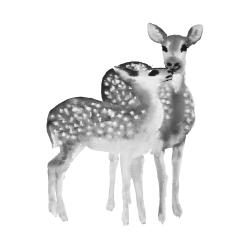 Fawns love