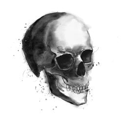 Crâne noir et blanc