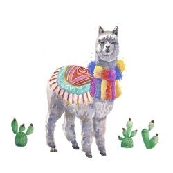 Traditional peruvian lama